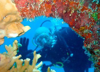 Buceo Naufragio de Pedernales Aruba