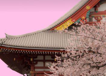 Qué es la poesía japonesa Haiku?